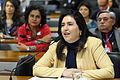 CDH - Comissão de Direitos Humanos e Legislação Participativa (23684262722).jpg