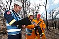 CSIRO ScienceImage 10651 Conducting bushfire research at Strathewen after the Black Saturday bushfires.jpg