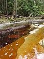 Cachoeira do santuário II - panoramio (6).jpg