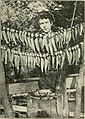 California fish and game (19890016354).jpg