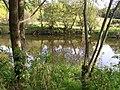 Camowen River - geograph.org.uk - 1532579.jpg