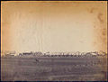 Camp near Brandy Station. (3110841774).jpg