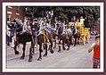 Canada 1976 Fiesta Sweet 16 (110026723).jpg
