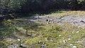 Canadian Dump (Mar Lodge Estate) (22SEP12) (05).jpg