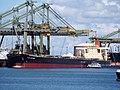 Cape Stefanie (ship, 1999) IMO 9176113, Mississippihaven, Port of Rotterdam pic1.JPG