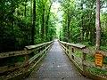 Cape fear river trail - panoramio.jpg