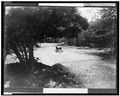 Car in stream in rock creek park.tif