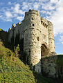 Carisbrooke Castle 2011, 40.jpg