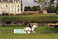 Carroussel Sarthois Mondial du percheron 2011 Cl J Weber02 (24057422486).jpg