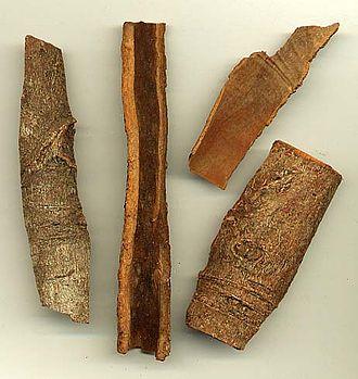 Cinnamomum cassia - Dried cassia bark