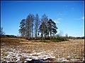 Cemetery - panoramio - Laima Gūtmane (simka….jpg