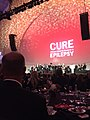 Chicago cast of Hamilton during Citizens United for Research in Epilepsy benefit IMG 5186.jpg