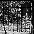 Cimetière du Dieweg3.jpg