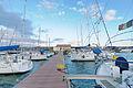 Circolo Nautico NIC Porto di Catania - Sicilia Italy Italia - Creative Commons by gnuckx (5436596927).jpg