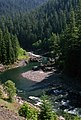 Clackamas River, Mt Hood National Forest-3 (37051489211).jpg