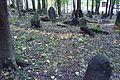 Cmentarz żydowski w Będzinie29.jpg