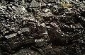 Coal (7977539566).jpg