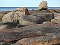 Coast at Bicheno Tasmania 20190725-024.jpg