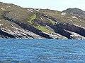 Coastline at Manish - geograph.org.uk - 1877875.jpg