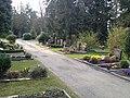 Coemeterium - panoramio.jpg