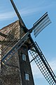 Coesfeld, Lette, Windmühle -- 2015 -- 5765.jpg