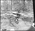 Cold Harbor, Va., vicinity. Unburied dead on the battlefield of Gaines' Mill LOC cwpb.01273.jpg
