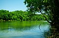 Collins-river-tn1.jpg