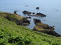 Combe Rocks and Western Combe Cove - geograph.org.uk - 192179.jpg