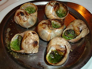 Helix pomatia - Cooked snails are called escargots