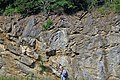 Copper Creek Thrust Fault (Thorn Hill section, northeastern Tennessee, USA) 1.jpg