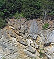 Copper Creek Thrust Fault (Thorn Hill section, northeastern Tennessee, USA) 8.jpg