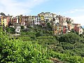 Corniglia seen from the hills.jpg