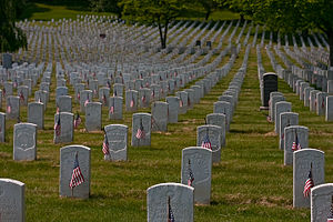 Cypress Hills National Cemetery - Section 2, Cypress Hills National Cemetery.