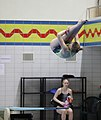 DHM Wasserspringen 1m weiblich A-Jugend (Martin Rulsch) 141.jpg