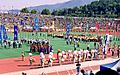 Daegu tug-of-war ceremonies.jpg