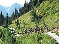 Dead Horse Creek trail (1338946602474e43831636e1d87aa7ee).JPG