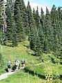 Dead Horse Creek trail (62ec6b606f414922bf23b7f3ce368c35).JPG
