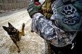 Defense.gov photo essay 110218-F-0848C-226.jpg