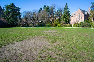 Denny Field (Washington) - Image: Denny Field