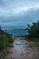 Despues de la tormenta (4576086718).jpg