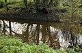 Disused Lagan canal near Edenderry - geograph.org.uk - 1576305.jpg