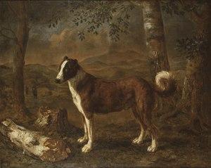 Dog and a Birch Log