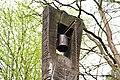Dolní-Bukovina-zvonička-v-luhách2019b.jpg