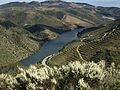Douro primaveril (25977553633).jpg
