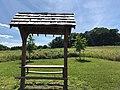 Doylestown Meadow .jpg