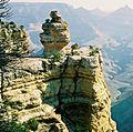 Duck on a rock Grand Canyon South Rim.jpeg