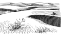 Dunes 2 (PSF).png