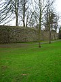 East Walls - geograph.org.uk - 665784.jpg