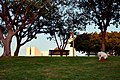Edith Wolfson Garden - פארק אידית וולפסון - panoramio (1).jpg