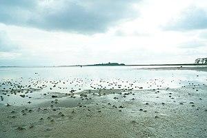 Bay of Aarhus - Image: Egens Vig, lavvande, sandorm